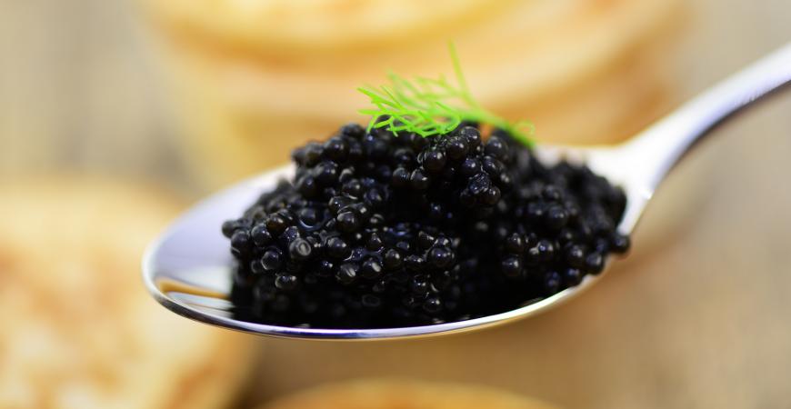 Le caviar de l'Estuaire de la Gironde