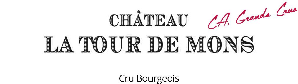 visuel Château La Tour de Mons