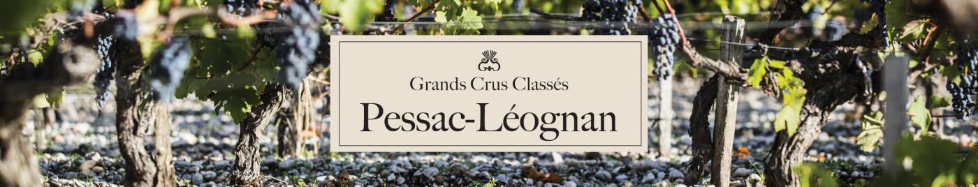 Grands Crus Classés - Appellation Pessac-Léognan