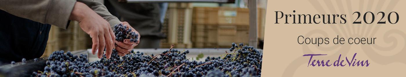Vins de Bordeaux en Primeurs 2020 |  Coups de Coeur du magazine Terre de Vins
