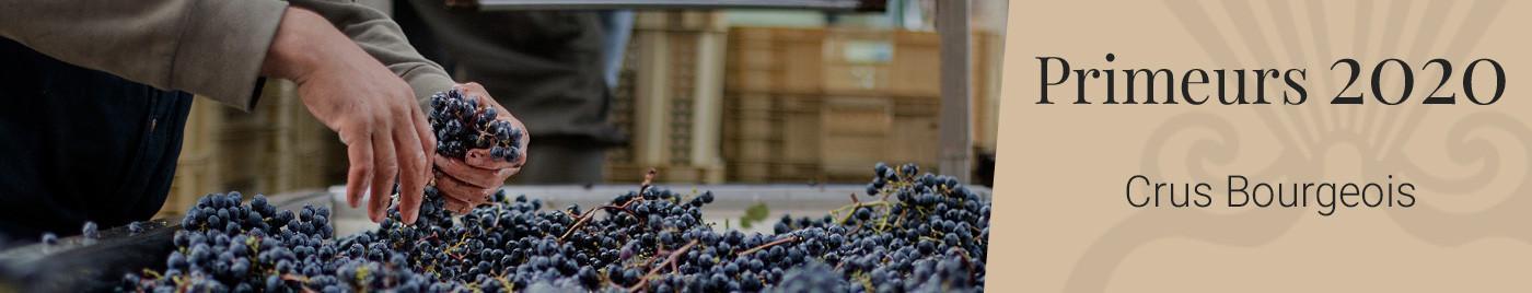 Vins de Bordeaux en Primeurs 2020 | Cru Bourgeois, Supérieur et Exceptionnel